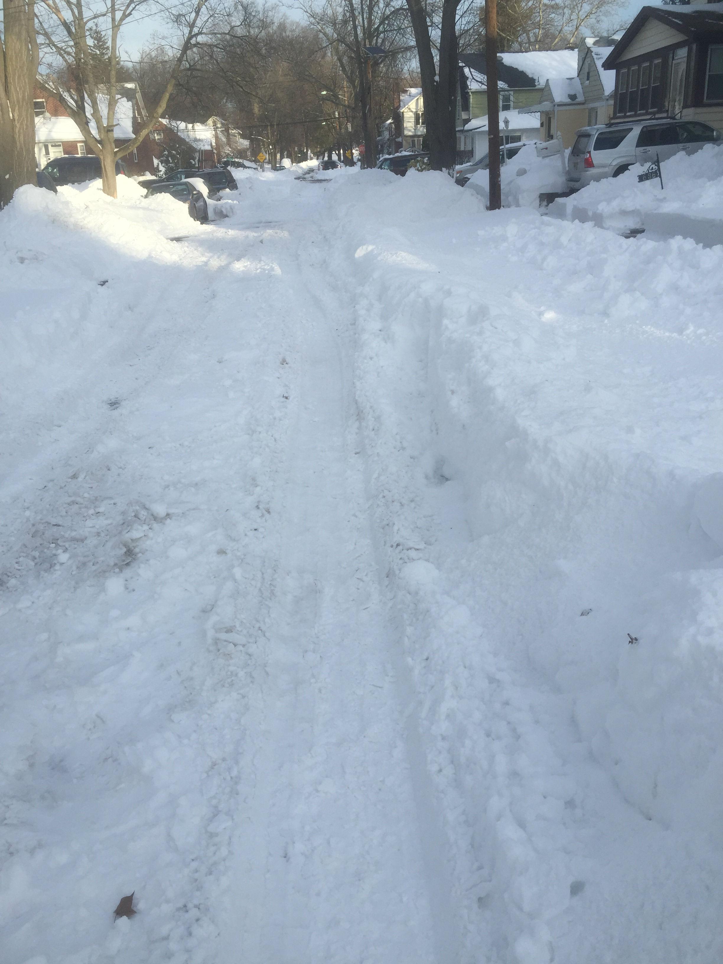 230fb30268407f6b16ff_snow_3_-1.jpg