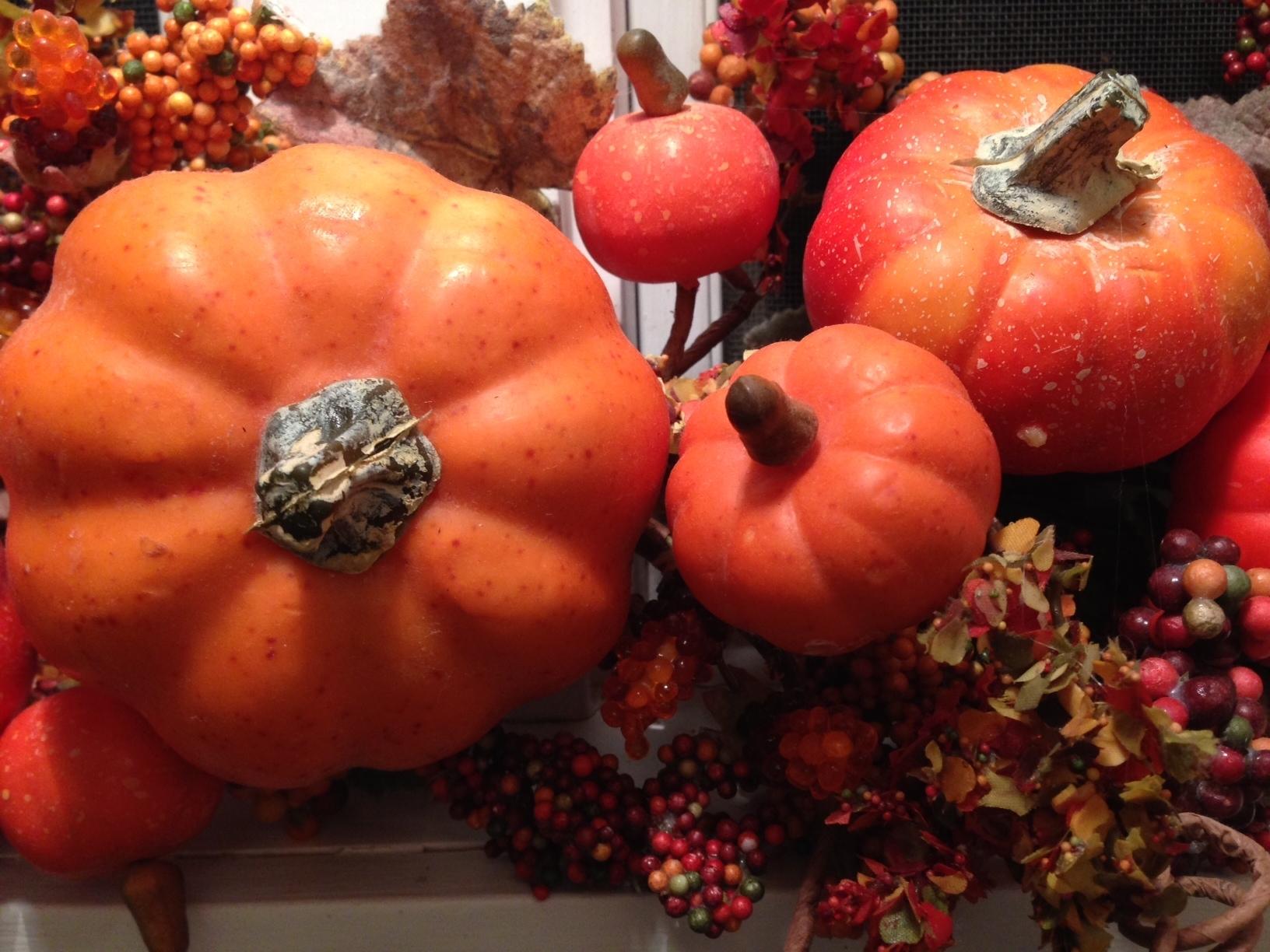 21aa513be76bfebd036d_pumpkin.JPG