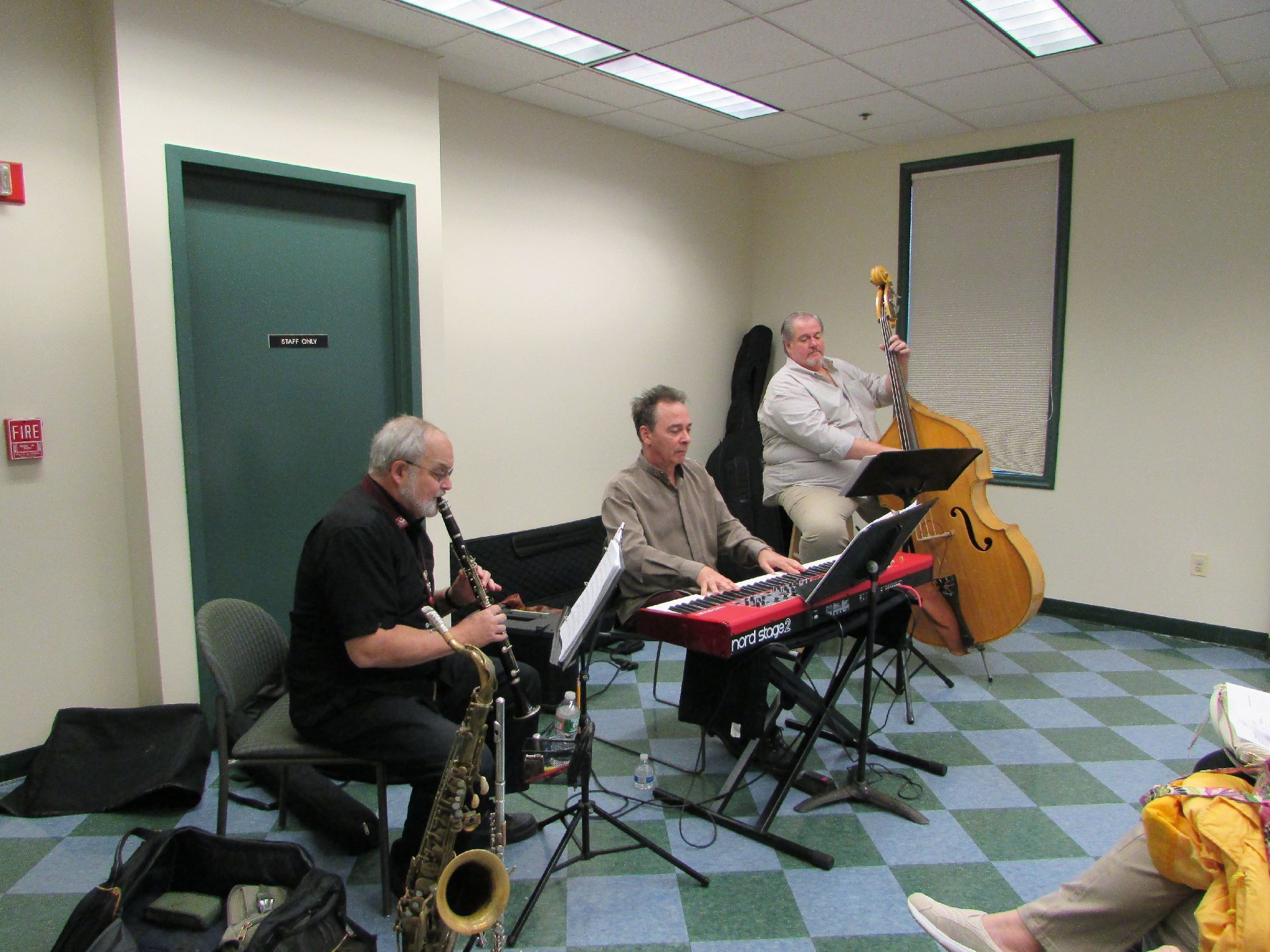 861a64b04f00badae383_Traveling_Stage_Company_-_Regan_Ryzuk_in_keyboards_and_clarinet_and_double_bass_accompanimment_-_May_6_2015_at_WTL.jpg