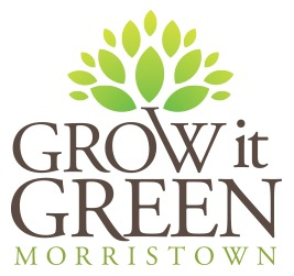 8e35fb58d67107074e66_3dde9d511f800669c5b8_grow_it_green.jpg