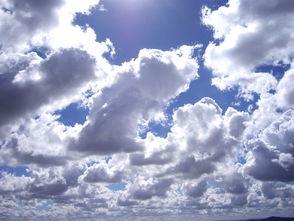Saturday, June 29, West Essex Weather, photo 1