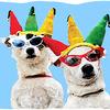 Small_thumb_a10165d23b13e0829a06_dogparade11_k9_2ndcc_tshirt_v3
