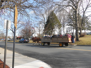 Hundreds Turn Out For Santa Visit and Horse-Drawn Wagon Rides, photo 26