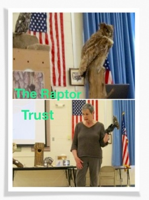 Winky And The Raptor Trust Visit Angelo L. Tomaso School In Warren, photo 1