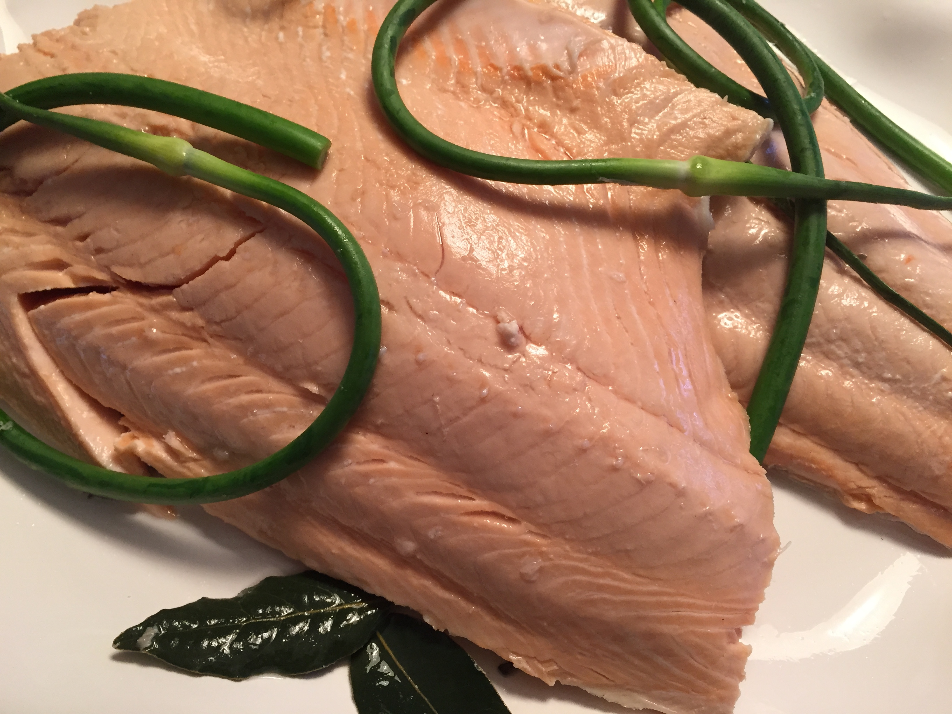 46ef1fc4873955a9f7ad_Salmon.Poached.1.JPG