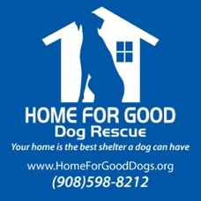 Home for Good Logo