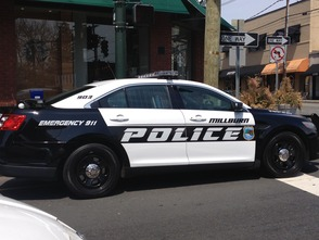 Woman Robbed in Downtown Millburn, photo 1