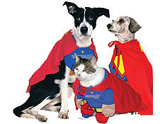 Calling All Super Heroes