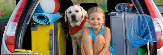 Top_story_668c3a8d4fa4e48aafcc_m51740291_summer_safety_a_spot_763x260_copy