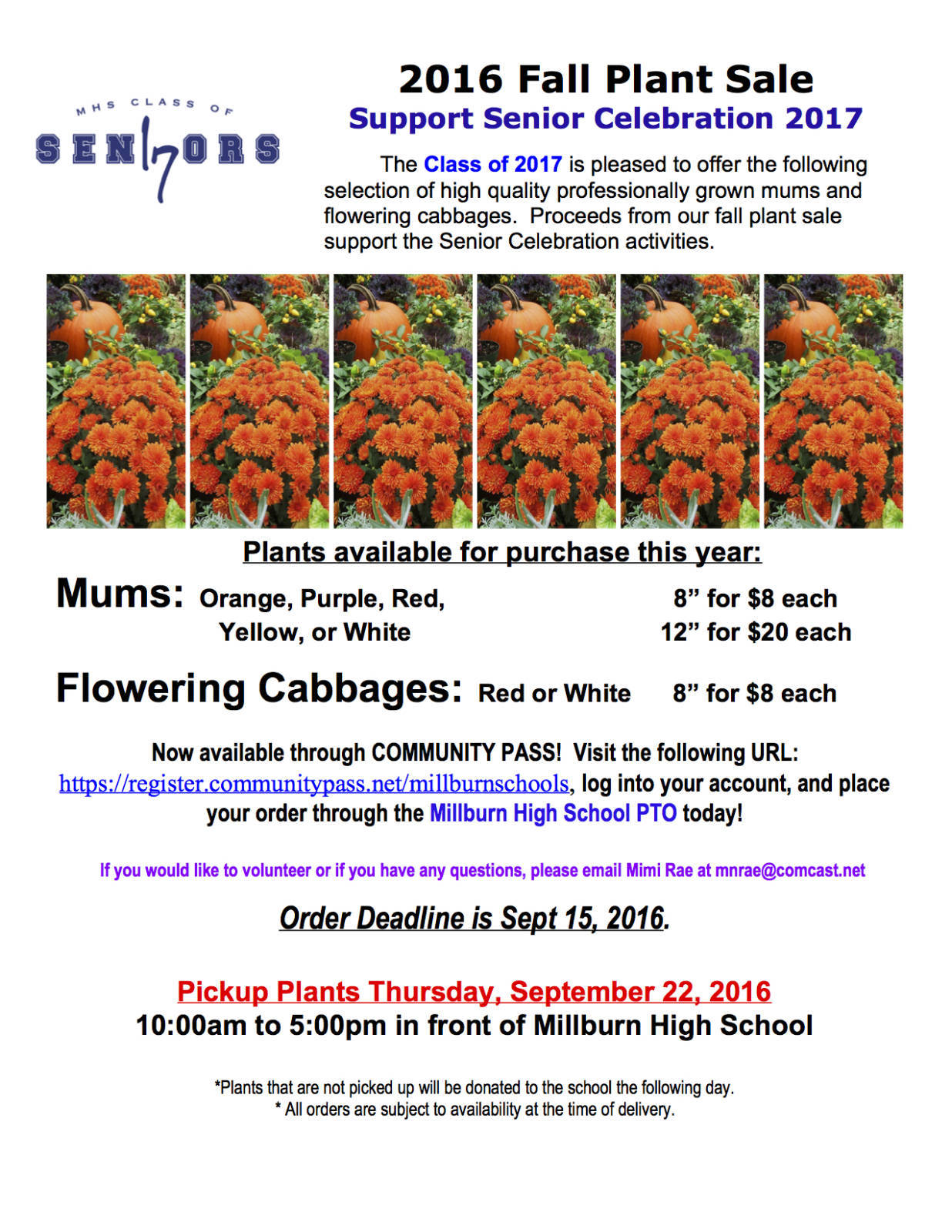 MHS Senior Celebration Plant Sale Order Fall Plants Now News TAPinto