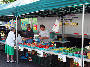 8f229dff54650167820b_Farmers_Mkt_-_Ort-farms.jpg