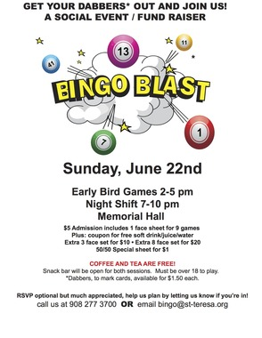 Bingo Fund Raiser at St. Teresa of Avila in Summit June 22, photo 1