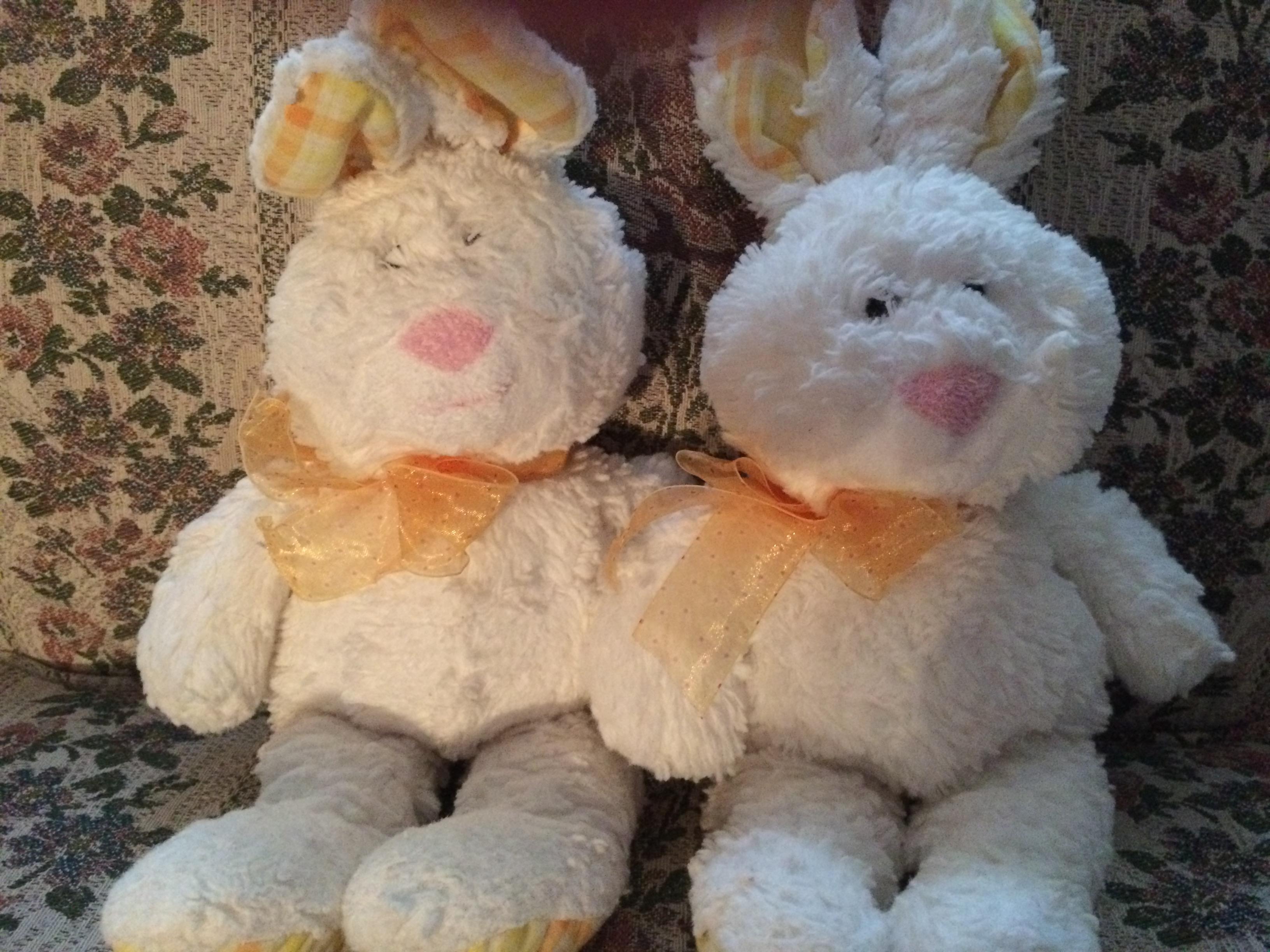 88ce42b43cee2f1a9f19_bunny.JPG