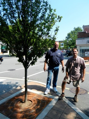 DDC Volunteers Install Tree Grates on Lincoln Place, photo 2