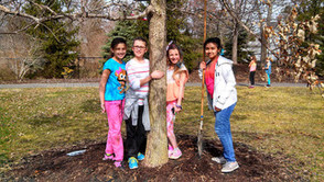 Fanwood Celebrates Arbor Day on Fri., Apr. 25