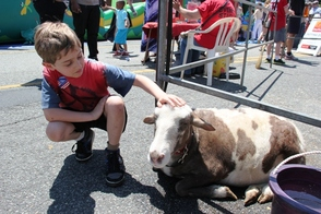 Jack at the Petting Zoo