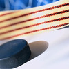 Small_thumb_6aee19ec0bbf08667739_hockey_image