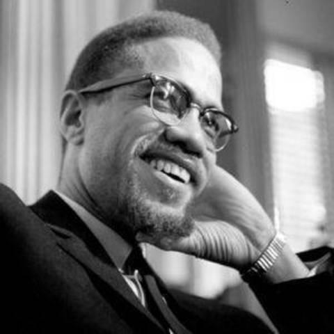 malcolm x and african american politics history essay The failures of the civil rights movement resulted in the black power movement   malcolm x was an african american muslim minister and a human rights  activist  the making of african american politics written by cederic johnson   retrieved from  .
