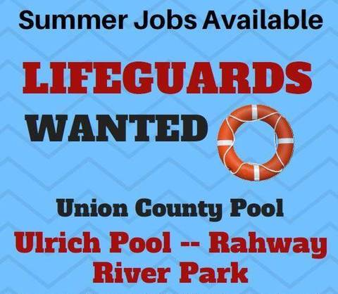 Summer Life Guard Job Opportunity In Union County Linden Nj News Tapinto