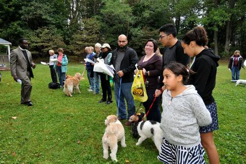 Plainfield Celebration Of Animals Sunday October 1 At 1 30 Pm Plainfield Nj News Tapinto