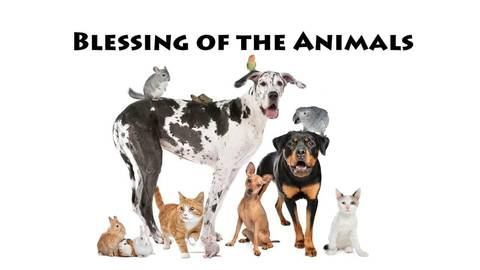 Quot Blessing Of The Animals Quot Benefits Local Shelter Tapinto