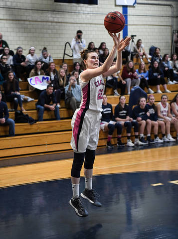 girls basketball chatham cougars defeat bayonne bees bayonne nj news tapinto. Black Bedroom Furniture Sets. Home Design Ideas