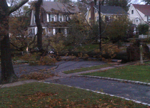 South Orange Publishes Hurricane Sandy Survey Data, photo 1