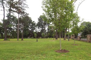Ridgeway Park