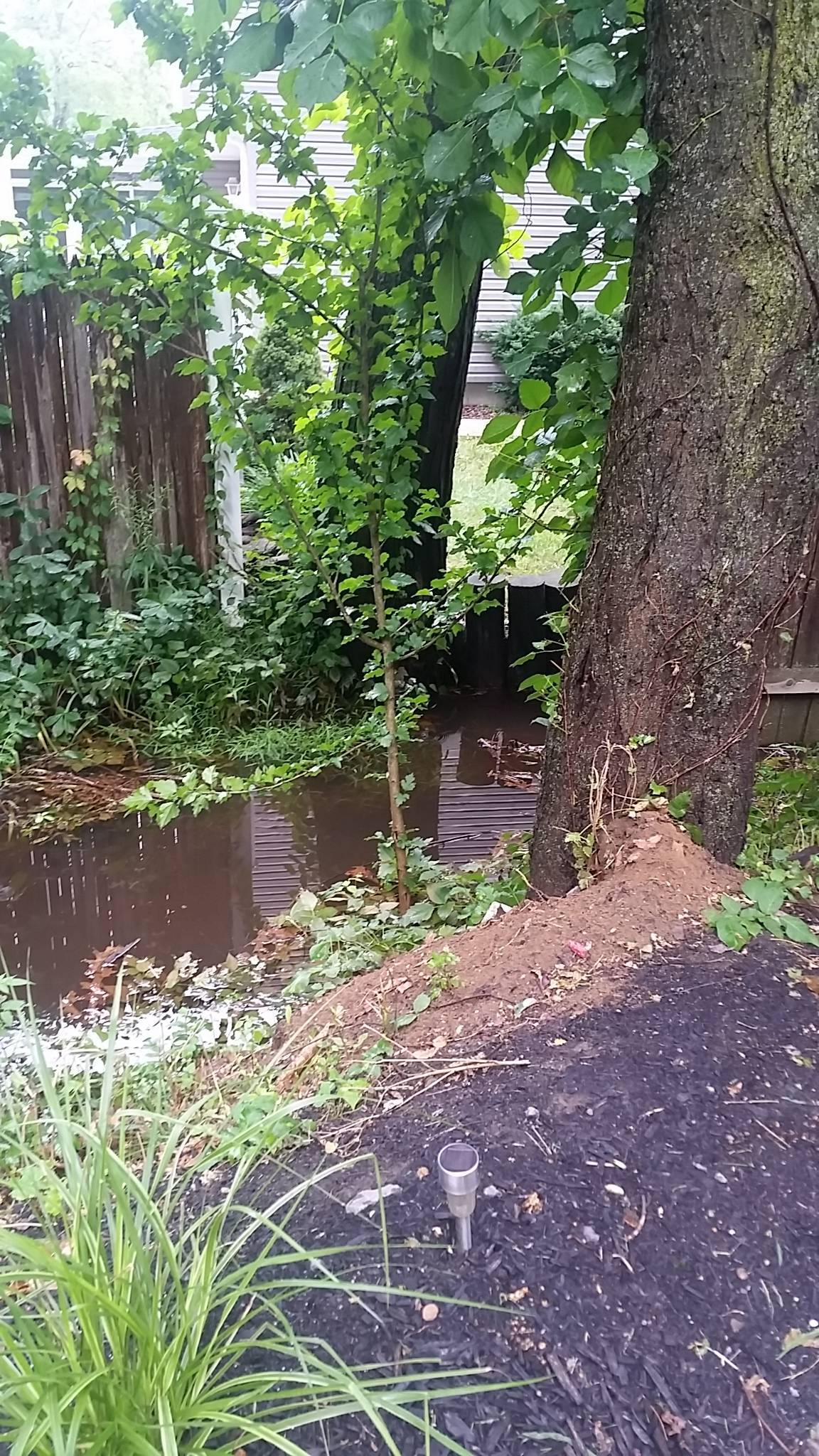 spotswood neighbors search for answers to drainage issue