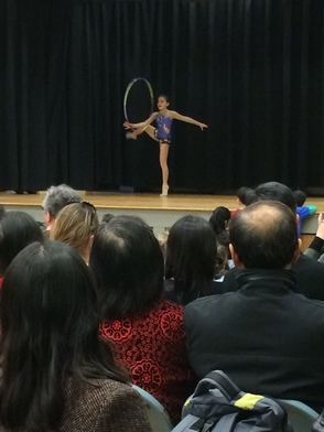 Collins Multicultural Night