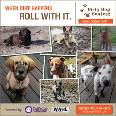 Home For Good Dog Rescue Joins Wahl® And Petfinder Foundation To Do The 'Dirty Work' To Clean Out America's Shelters, photo 2