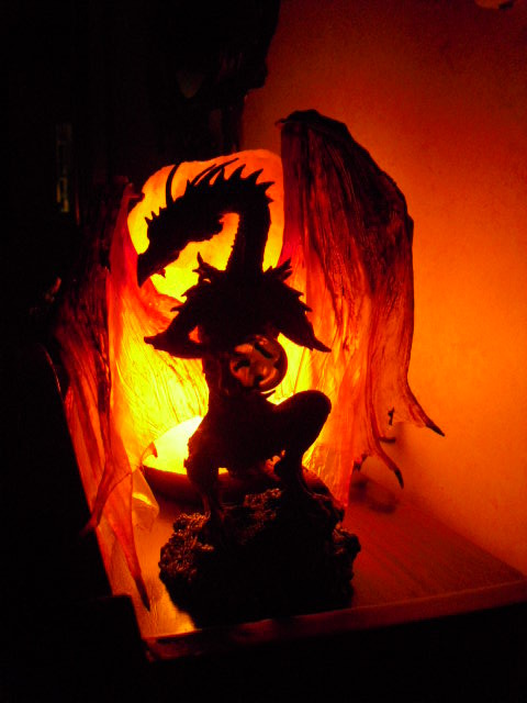 f8fb312dcd23ee4b52b9_dragons___shoes_008.JPG