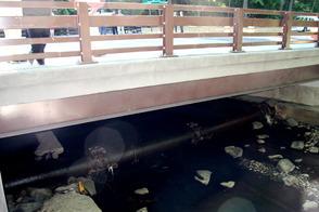 Millburn's Glen Avenue Bridge Reopened with Ceremony, photo 5