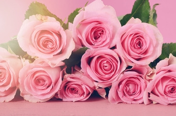 Top_story_f44de209a665f648b41a_flowers