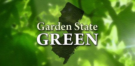 Top_story_f5f290a33968a67f5d59_stock_image_-_garden_state_green_-_v1