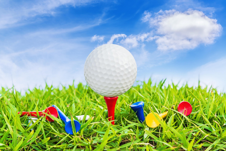 90ddf5b8745b4f3c8ee2_Golf.jpg