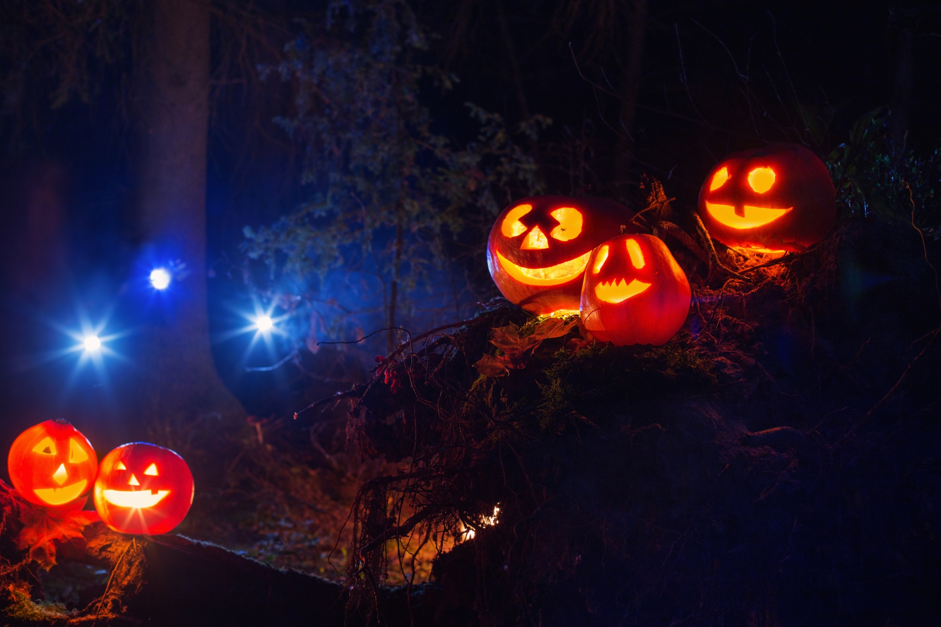 content options halloween safety tips - Halloween Decorating Contest