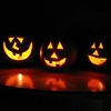 Small_thumb_429e9d401f28717c3c62_halloween1_lobo235