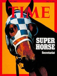7bb8f9fdc55ad447d4c4_super-horse.jpg