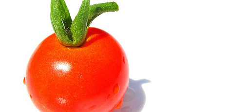 Top story 77df01979a153fe4d54e fresh tomato