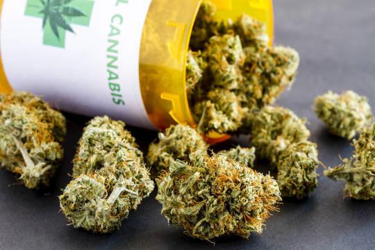 Top_story_76e69a4a641dc5ca8577_marijuana_1