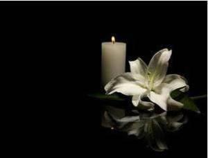 Obituary_30720b1120c7469d8844_sympathy