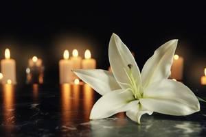 Obituary_7cd0a46f5d224575c3a3_shutterstock_1189306000