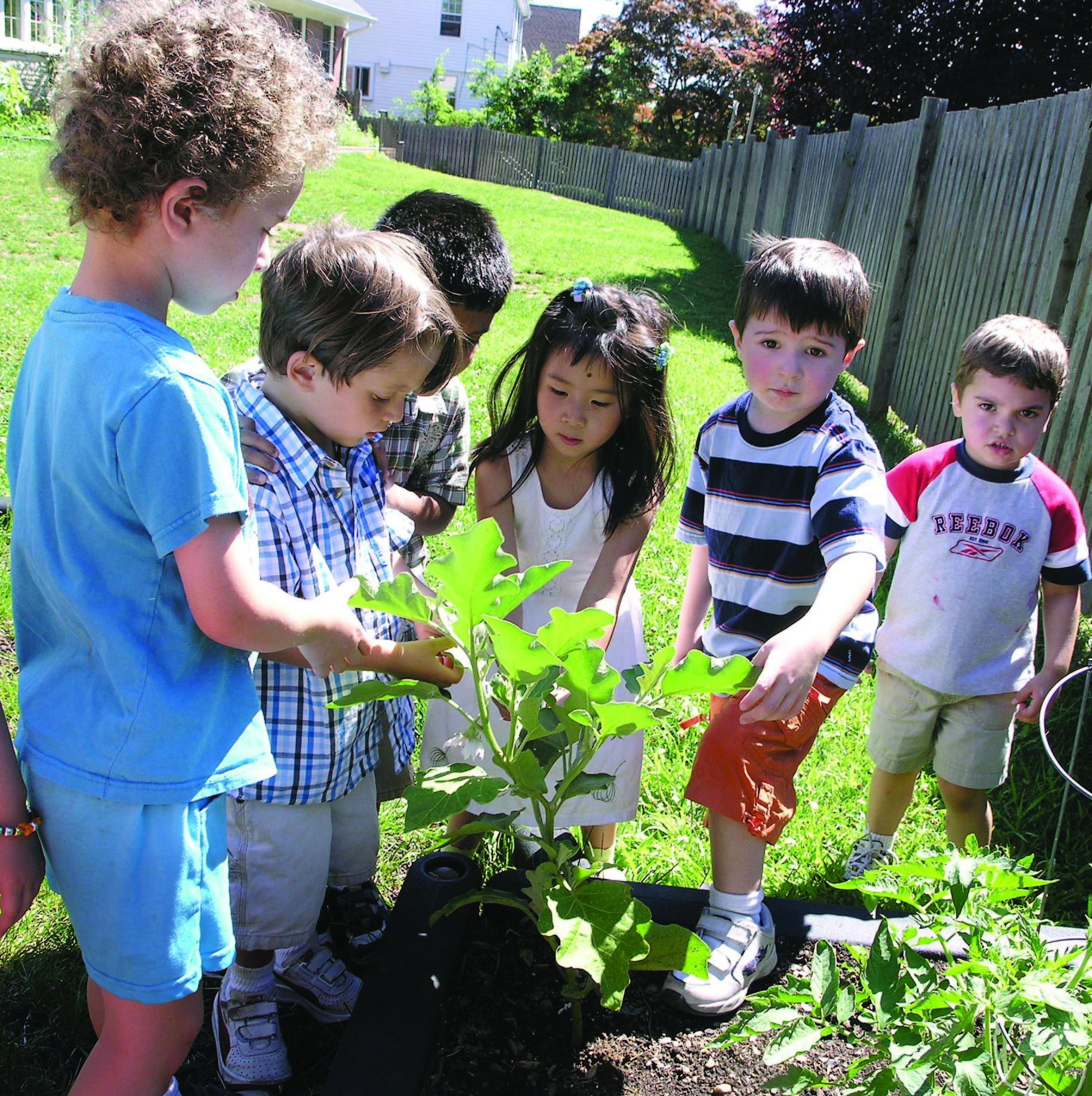 27be8902eac773d974d0_learning_circle_preschool_garden_2.jpg
