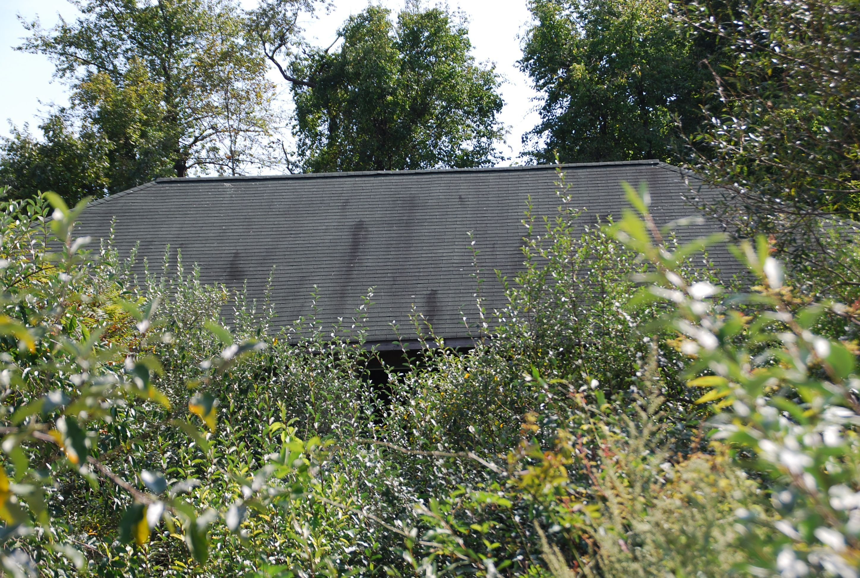 4319c7e6c68c9e692f62_station_roof2.jpg