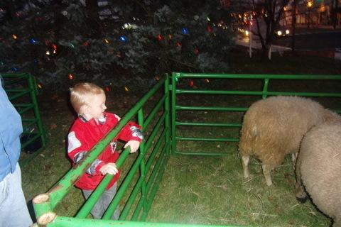 66a18008ca14dda3f81a_ryan_dowd_greets_the_sheep_at_the_np_presbyterian_church.jpg