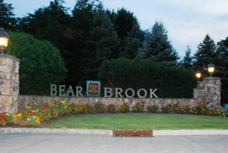 8e6d121798cbc466fba6_bearbrook.jpg