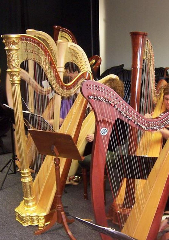 aa5733748254ee110d6f_Harp1.jpg