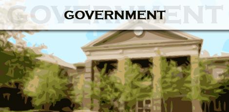 bf1ec2184b91ef391dfa_government.jpg