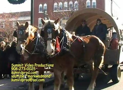 c8e3bb1ed2d9a76c4f66_Horse___carriage.jpg